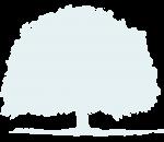 tree-bg_fuller4
